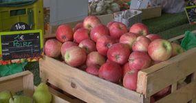 Pommes, poires, pêches, abricots...à déguster chez nous !