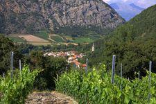 Les vins de la Vallée