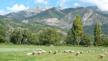 Une partie du massif du Piolit (2 464 m d'altitude)